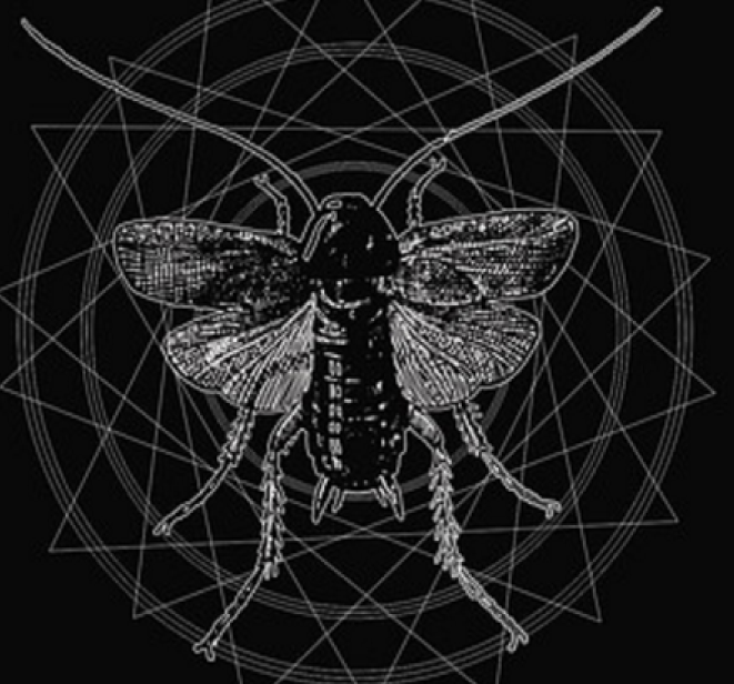 Our Inner Insect